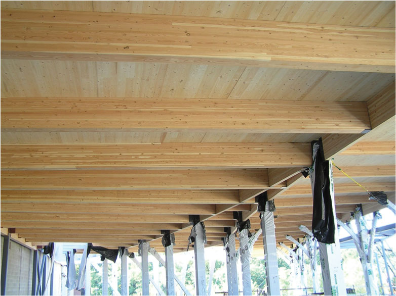 the promega biotechnology production facility features an innovative mix of glued laminated timber and cross laminated - Innovative Wood Beam Ceiling
