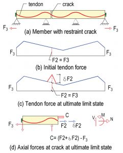 Figure 9. Forces at ultimate limit state in a member with bonded tendon and restraint cracking.