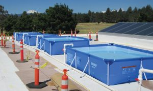 Pools filled with water on the roof during load test of the repaired truss.